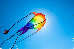 Fish-like kite flying on the sky Stock Images
