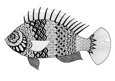 Fish line art design for coloring book for adult, tattoo, T shirt design, element for design and so on. Fish line art design  for coloring book for adult, tattoo Stock Photo