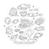 Fish line icons with outline style  Stock Images