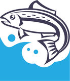 Fish logo design. Vector illustration Stock Photography