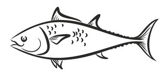 Fish logo Royalty Free Stock Photo