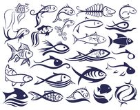 Fish logo. Set of logos of fishes Stock Image
