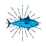 Fish logo template Royalty Free Stock Images
