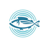 Fish logo template Royalty Free Stock Photos