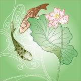 Fish and lotus. Two fish play beside lotus Royalty Free Stock Photo