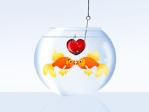 Fish in love Royalty Free Stock Image