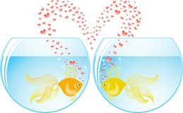 Fish lovers Stock Images