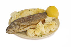 Fish Lunch. Trout, potato salad and lemon (with path Stock Photography