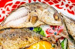 Fish Mackerel asia. Thai food Fish Mackerel and chili sauce Stock Photography