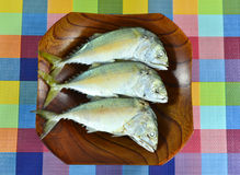 Fish. Mackerel fish in  basket on table Royalty Free Stock Images