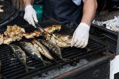 Fish mackerel and chicken tabaka grilled at bbq Stock Image