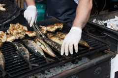 Fish mackerel and chicken tabaka grilled at bbq Stock Images