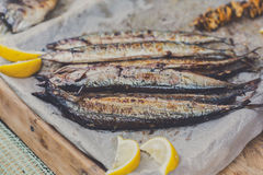 Fish mackerel grilled at bbq Stock Images