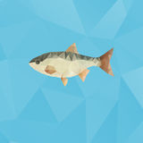 Fish made with triangles on polygonal background. Fish made with triangles on blue polygonal background Royalty Free Stock Image