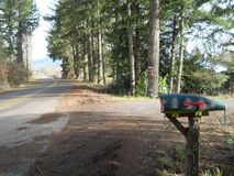 Fish mailbox. Road Tree trail woods forest Stock Image