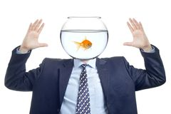 The fish man is here Royalty Free Stock Photo