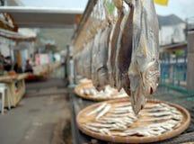 Fish market. Tai O, Lantau Island, Hong Kong, China Royalty Free Stock Photo