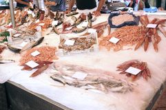 Fresh fish at a market. Fresh fish displayed at a market street royalty free stock photo