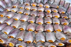 Fish on Market Stock Photography