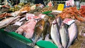Fish market. Different types of seafood in the fish market, Majorca, Spain Stock Photography