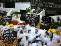 Fish Market Royalty Free Stock Photography