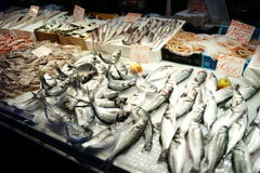 Free Fish Market Stock Photos - 46175123