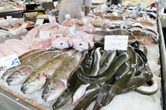 Fish market Stock Image