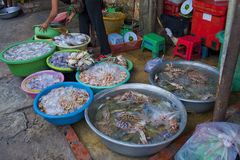 Fish market with alive sea food Royalty Free Stock Photography