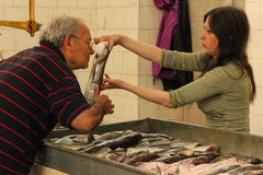 Fish market. buyer checking freshness .Split. Croatia. Indoor fish market (Peskarija). Buyer checking freshness of product offered by the fishmonger. Split Stock Photo