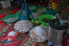 Fish market in Can Tho, Vietnam. Fish vendor stalls at the daily morning fish market in Can Tho on the Mekong Delta in Vietnam Stock Photo