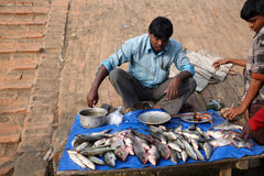 Fish market in Canning, West Bengal, India Stock Image