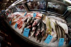 Fish market counter. Wide angle view. Royalty Free Stock Image