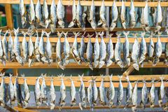 Fish market with dried salted in Istanbul, Turkey Royalty Free Stock Photography