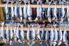 Fish market with dried salted in Istanbul, Turkey Stock Images