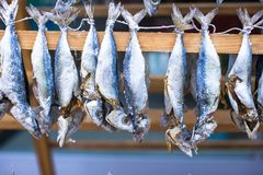 Fish market with dried salted in Istanbul, Turkey Royalty Free Stock Image
