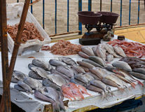 The Fish Market Royalty Free Stock Image