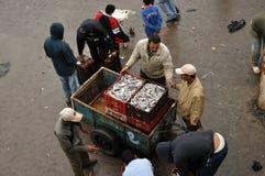 Fish market of Essaouria, Morocco Royalty Free Stock Photo
