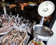 Fish market. Fishs and scales Royalty Free Stock Photography