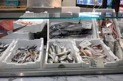 Fish market in Florence, Italy stock photography