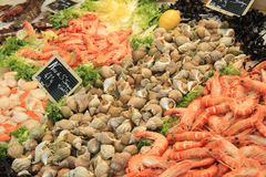Fish at a market Royalty Free Stock Photography