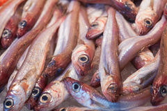 Fish on a Market Stock Photos