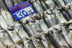 Fish market, Galata waterfront, Istanbul Stock Photography