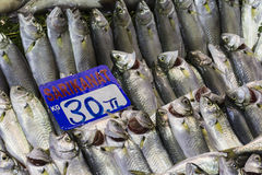 Fish market, Galata waterfront, Istanbul Royalty Free Stock Photos