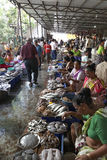 Fish market, Goa, India. Royalty Free Stock Images