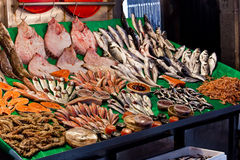 Fish market in Istanbul Stock Photography