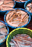 Fish in market Royalty Free Stock Photos
