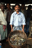 Fish market in Kumrokhali Stock Photos