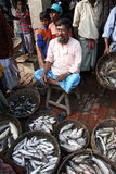 Fish market in Kumrokhali Stock Images