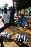 A fish market in Malawi. Stock Images