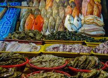Fish market in Manila, Philippines. Seafood at fish market of Seaside Dampa Macapagal in Manila, Philippines Royalty Free Stock Photos